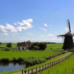 Przeprowadzki do Holandii